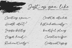 Thenaturalist Caligraphy Wedding Font Product Image 14