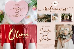 stunning script font bundle Product Image 9