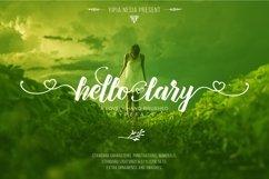 Hello Lary Product Image 2