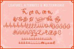 HiGirls Script Product Image 3