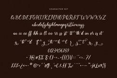 Fallisanta Flourish Font Product Image 5