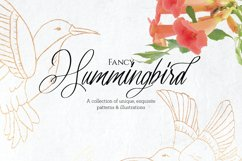 Fancy Hummingbird Collection Product Image 1