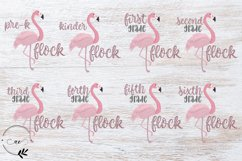 Back to School - Flamingo Class Flock Product Image 1