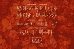 Web Font Balanthur - A New Handwritten Brush Font Product Image 6