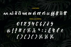 Moonway - A Hand Brush Typeface Product Image 3
