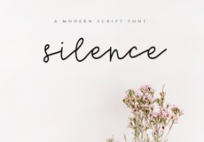 Silence - Delicate Script Font Product Image 1