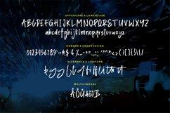 Alister   A Stylish Brush Font Product Image 5