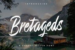 Bretageds Brush Font Product Image 1
