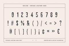 skyline - vintage ligature sans font Product Image 6