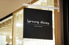 Spring Daisy Product Image 2