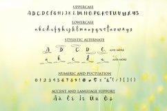 Mellisa Calligraphy Font Product Image 4