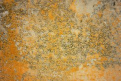 the texture of the concrete with the moss Product Image 1