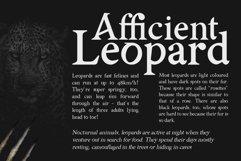 AsMATH A Sharp Serif Font Product Image 2
