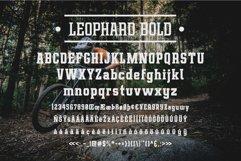 Leophard Font Family Product Image 2