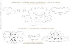 Aesthetics luxury script font Product Image 3