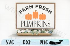Farm Fresh Pumpkins - Fall, Thanksgiving, Autumn, Halloween Product Image 3