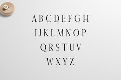 Earywn Serif 3 Font Family Pack Product Image 2