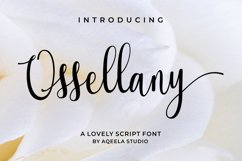 Ossellany Script Product Image 1