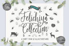Felichiya Collection Product Image 1