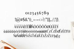 Abiah Sans Serif Font Family Pack Product Image 4