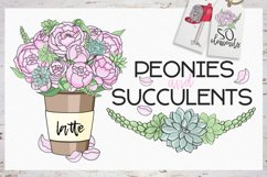 Peonies and Succulents Product Image 1