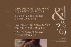 Collingar - Aesthetic Serif Product Image 4