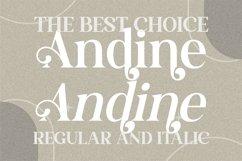 Andine - Beautiful Serif Font Product Image 4