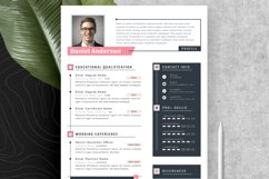 Modern Editable Resume Cv Template in Word Apple Pages Product Image 5