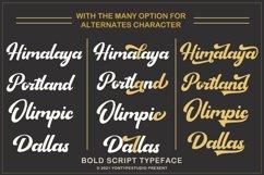 Sagha A Modern Script Typeface Product Image 4