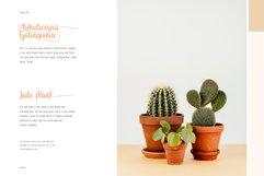 de Floras - 5 Fonts Family Product Image 3