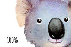 Watercolor koala clipart Product Image 3