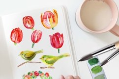 Spring Tulips clipart Product Image 3