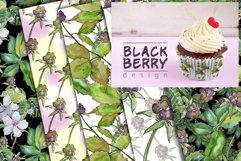 Sweetly blackberry JPG watercolor set  Product Image 6
