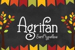 Agrifan Product Image 1