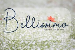 Bellissimo Product Image 1