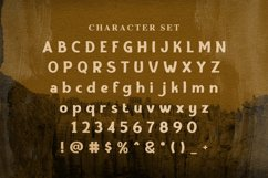 Web Font Brown Canyon Product Image 4
