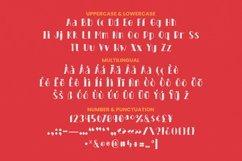 Web Font BURNOUT Font Product Image 4