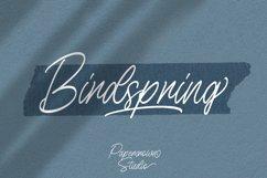 Birdspring Signature Product Image 1