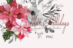 CHRISTMAS FLORAL Pointeness watercolor clipart Product Image 1