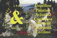 Michaela Calistta - Roman Serif Product Image 4