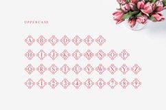Tulip Monogram split letter font Product Image 5