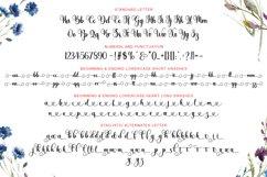 Blaytina Lovely Font Product Image 6