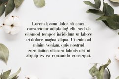Sonder Serif Typeface - 5 weights Product Image 6