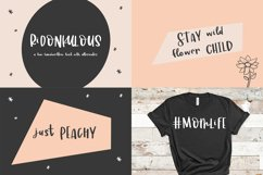 The Smooth Crafting Font Bundle Product Image 2