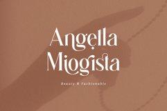 Gingko Ligature Typeface Product Image 5