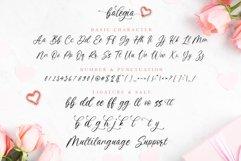 Balegia - a Cute Calligraphy Product Image 4