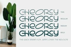 Cheorcy  Modern Sans  Product Image 3