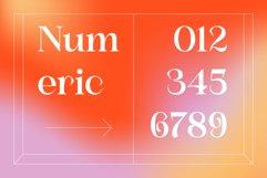 Shunsine Product Image 2