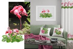 Tropical flamingo clipart - watercolor birds Product Image 6