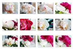 Bouquet of beautiful white and pink peonies Photo Bundle Product Image 3
